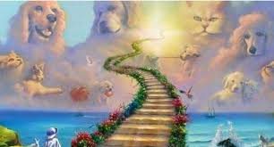 Il ponte dell'arcobaleno!