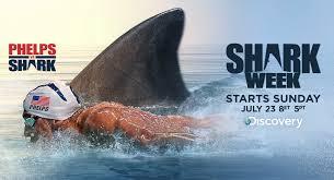 Shark vs Michael Phelps