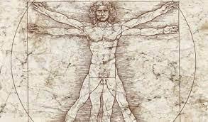 La centralità dell'uomo vitruviano