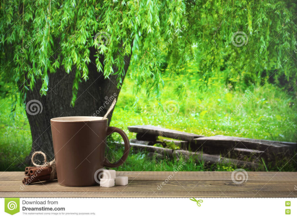 Caffè, salva le foreste!